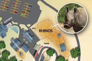 rhino_exhibit_map